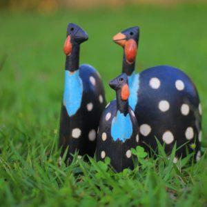 Guinea Fowl Family